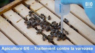 L'apiculture bio – Le traitement contre la varroase avec l'acide oxalique (partie 6/6)