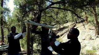 Монстры в лесах трейлер