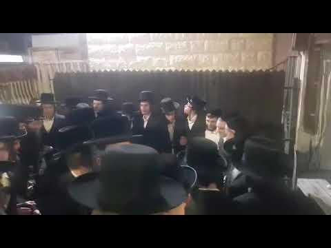 """חסידי סדיגורא בריקוד עם הרב דב קוק - ליל שישי תצווה תשע""""ט"""