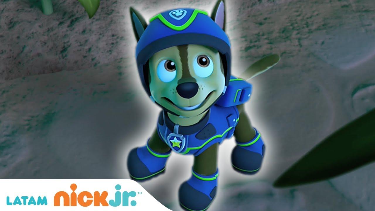 PAW Patrol, patrulla de cachorros   🐾 Lo Mejor de Chase 🐾   Nick Jr. en Español