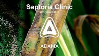 Spring 17 Septoria Clinic
