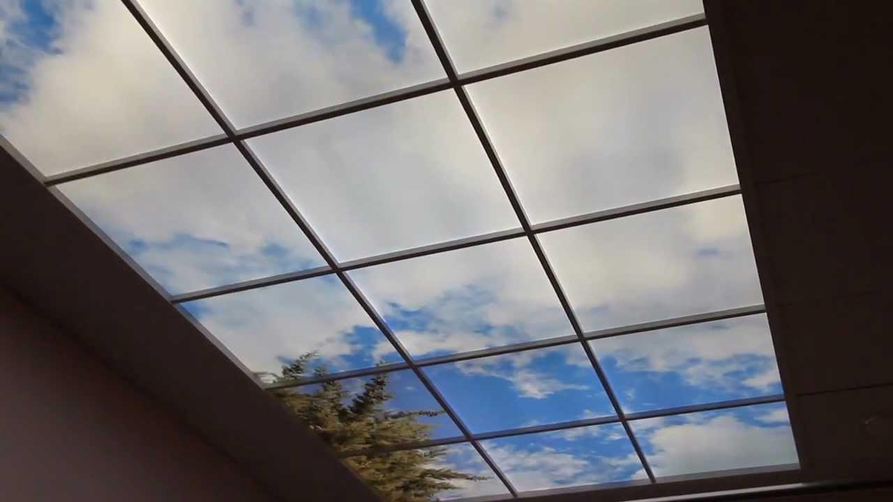 Lifeimage virtual windows