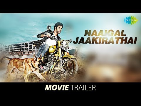 Naaigal Jaakirathai -Official Trailer | Sibi Sathyaraj | Shakti Soundar rajan | Dharan Kumar