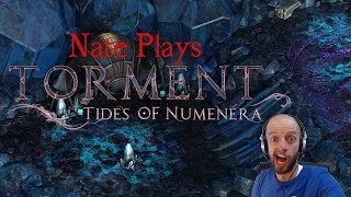 Torment: Tides of Numenera Gameplay PC