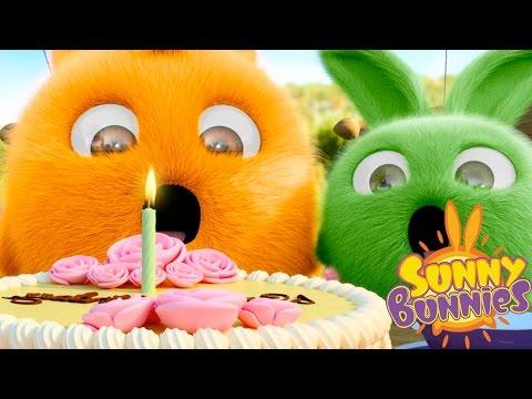 Cartoons for Children | Sunny Bunnies SUNNY BUNNIES BIRTHDAY CANDLE | Funny Cartoons For Children