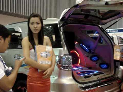 Auto & Petro Vietnam 2009