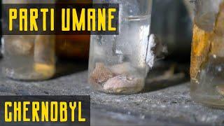 I FOUND HUMAN RESTS in CHERNOBYL  PT. 3/3 Chernobyl Series