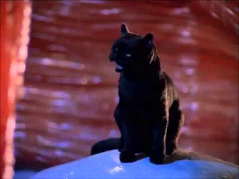 The Best Of Salem Sabrina The Teenage Witch Youtube
