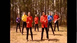 The Wiggles - Do The Wiggle Groove (2004)