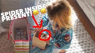 FUNNY BIRTHDAY PRESENT SPIDER SURPRISE!