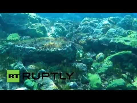 Russia: Live camera installed in world's deepest lake