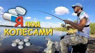 Ловля плотвы | Рыбалка на фидер | Аллергия