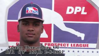 Adrian Hernandez OF / 2017 DPL profile