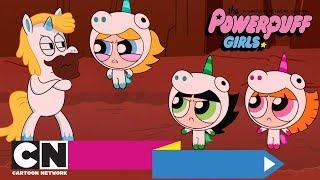 Die Powerpuff Girls | Aufregung im Einhornland (Ganze Folge) | Cartoon Network