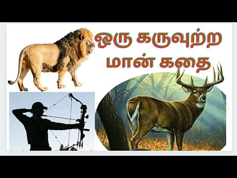 Download A Story of Pregnant Deer   ஒரு தாய் மான் பிரசவக் கதை   Sundaravadivel   Tamil Family Talk