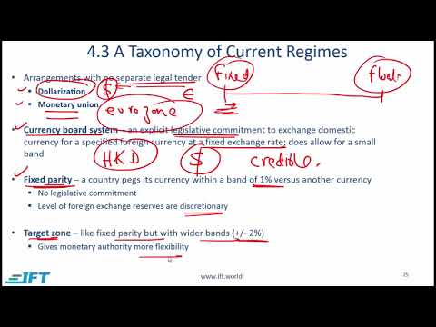 Level 1 CFA Economics: Currency Exchange Rates-Lecture 5