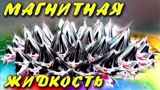 МАГНИТНАЯ ЖИДКОСТЬ СВОИМИ РУКАМИ  MAGNETIC FLUID LIQUID METAL ferrofluid ИГОРЬ БЕЛЕЦКИЙ(Магнитная жидкость это поразительное зрелище, как будто жидкий металл. Как сделать магнитную жидкость,..., 2015-04-20T15:30:06.000Z)