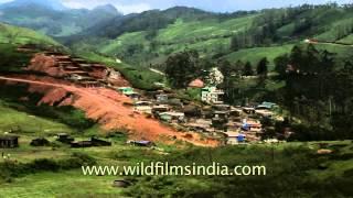 A view of Munnar in Kerala