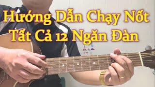 Muốn Tiến Bộ? Chạy Nốt 12 Ngăn Đàn Guitar Mỗi Ngày| Guitar Luyện Ngón |