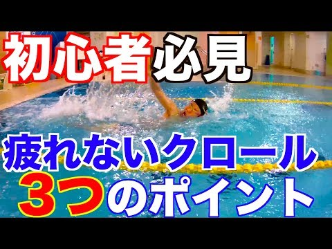 疲れないクロールを泳ぐ3つのポイント 水泳
