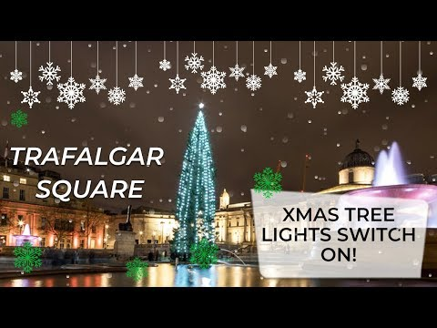Trafalgar Square Christmas Tree Lights Switch On! | With Nick Snaith