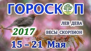 Гороскоп. Прогноз таро на неделю с 15-21 мая 2017 (ЛЕВ - ДЕВА - ВЕСЫ - СКОРПИОН)