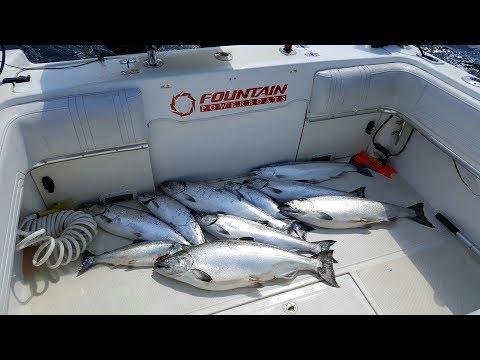 NFN Salmon Fishing Lake Michigan #5 for 2017 - Door County Wisconsin