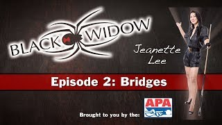 Jeanette Lee Pool Lessons and Billiard Instruction - Bridges