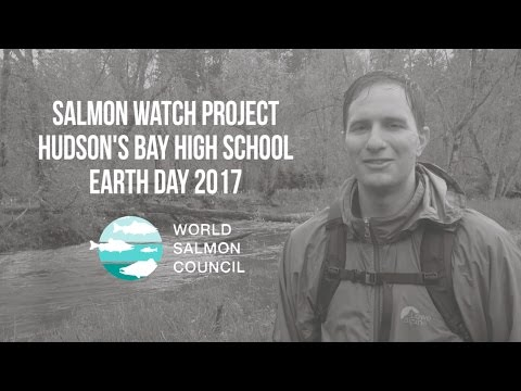 Salmon Watch Project - Hudson's Bay HS - Earth Day 2017