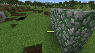 Sword in wall trick MCPE/Minecraft PE