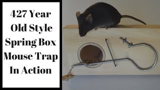427 Year Old Style Spring Box Mouse Trap In Action. Mascall's Mouse Trap.