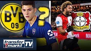 Dortmund vor Balerdi-Transfer & Vilhena im Fokus von Leverkusen | TRANSFERMARKT