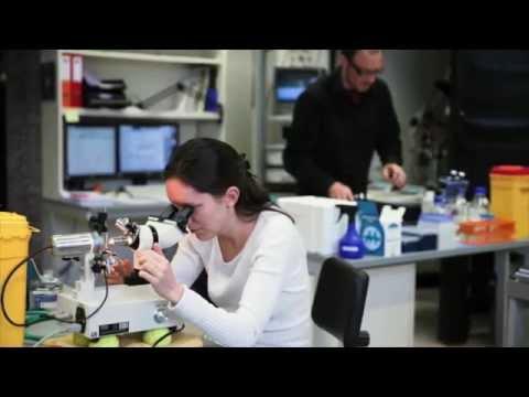 Dr. Christina Sanchez Analyzes How THC Kills Cancer Cells