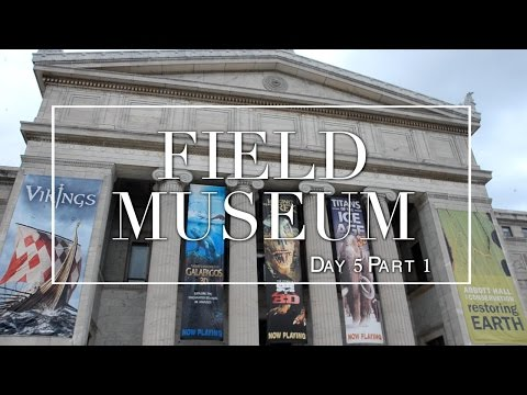 Chicago Travel Diary: Field Museum | Day 5 Part 1