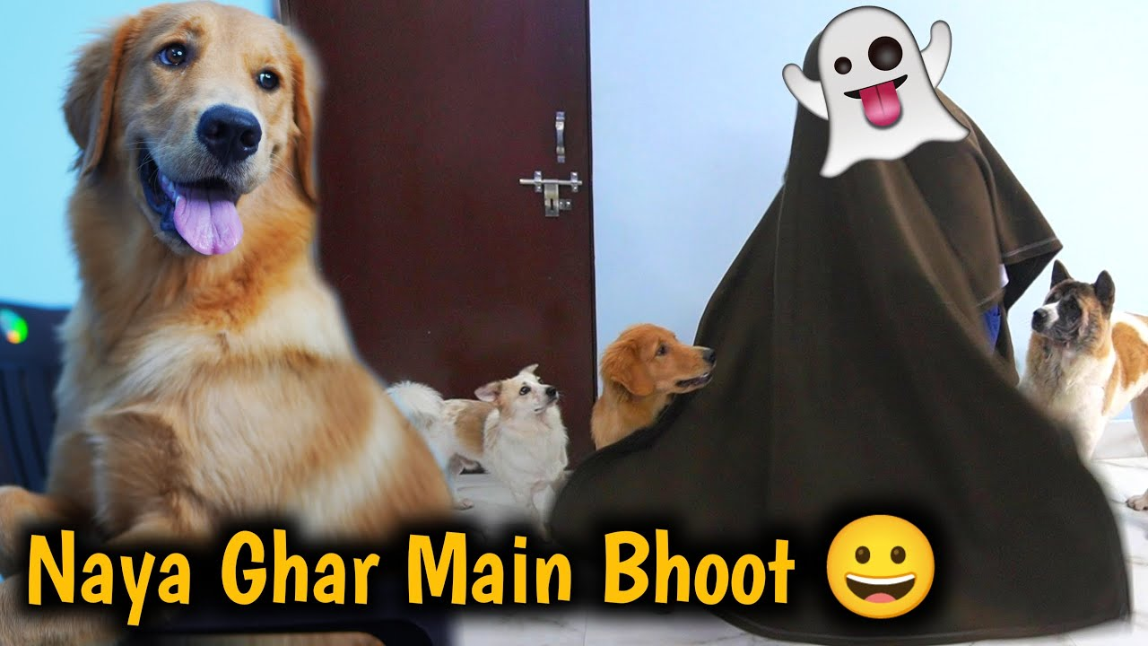 """Hamare Ghar Main Bhoot 👻 