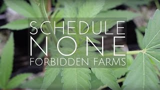 SCHEDULE NONE: Episode One - Forbidden Farms