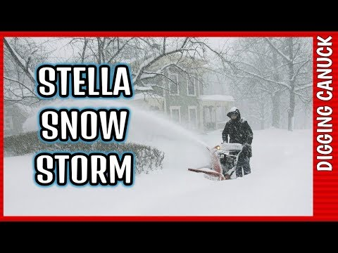 metal detecting canada STELLA SNOW STORM