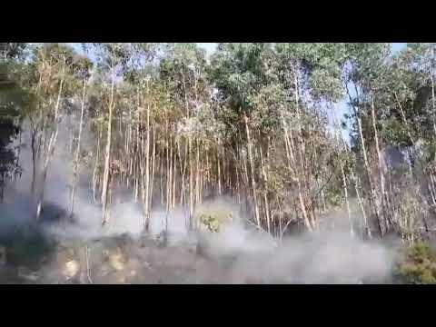 Labores de extinción en el incendio de Castrolandín