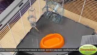 Клетка для хомяков, мышей • Ferplast CRICETI 100 • Зоомагазин Киев