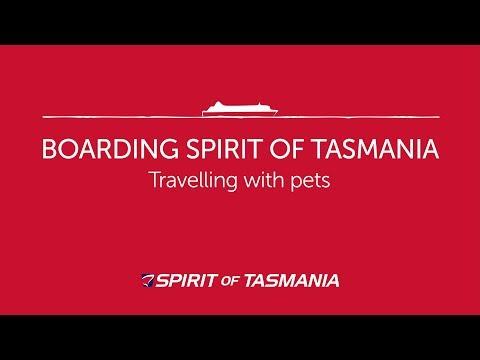 Boarding Spirit Of Tasmania With Pets