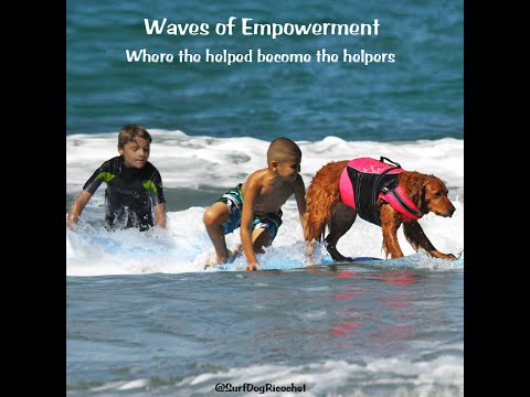 Surf Dog Ricochet's Waves of Empowerment