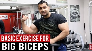 "Add inches to your ARMS with ""ONE SIMPLE EXERCISE""  (Hindi/Punjabi)"