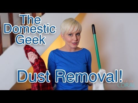 The Domestic Geek: Dust Removal