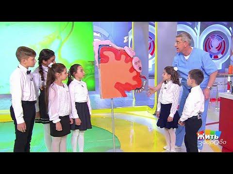 Жить здорово! Занятия музыкой для детей(06.12.2017)