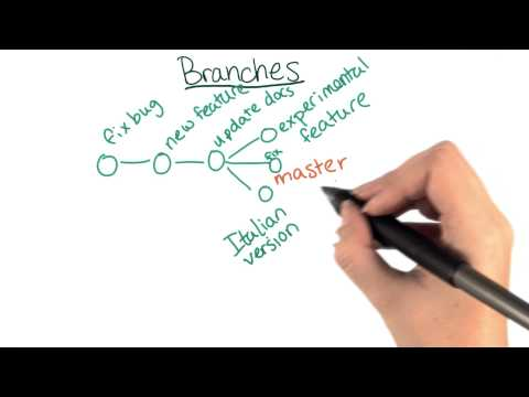 Branches - How to Use Git and GitHub