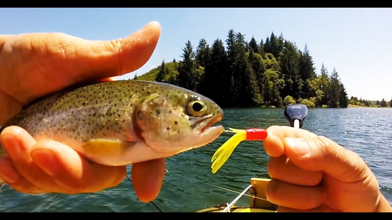 Trout fishing youtube for Youtube trout fishing