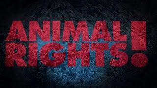 Mind Terrorist - Stop the Abuse
