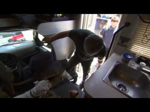 Cesar 911 - 'Attack Dogs' Exclusive Clip