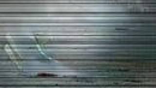 Jazznoize - Mascletà electroacústica