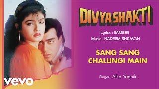 Sang Sang Chalungi Main - Full Song Audio   Divyashakti   Alka Yagnik